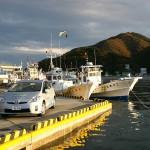 秋刀魚漁から戻った船が並ぶ女川漁港