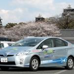 熊本城は桜が満開だ