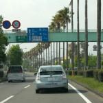 椰子並木を抜けて南九州道へ