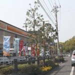 トヨタカローラ鹿児島 本店