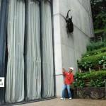 エントランスには巨大なカブトムシが