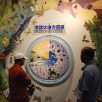 虫の惑星地球についての展示