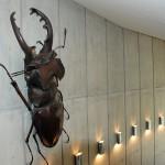 館内にも多数展示している大型昆虫模型