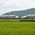 町野地区の景観に配慮した大倉市営住宅