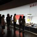 福井県の恐竜常設展示コーナー