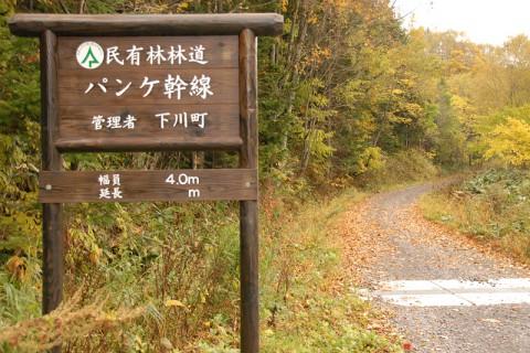 """""""林業の要""""林道がしっかりと管理されている"""