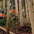 木材を掴んで荷役を行う重機「グラップル」