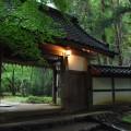 竹林が印象的な釈迦堂門