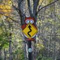フクロウやキツネなどかわいい標識が立っている
