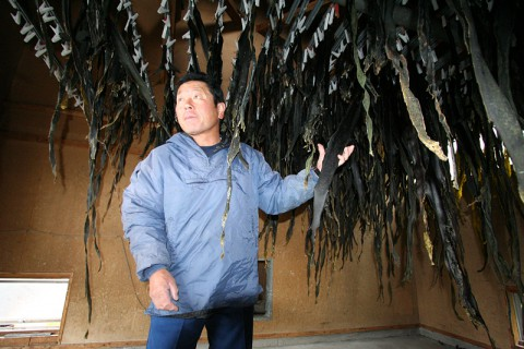 昆布の乾燥場で作業する寺道さん