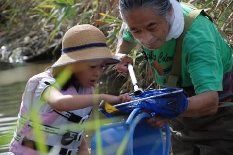 子供たちは汽水域の生きものに眼を輝かせる。