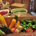 収穫したオーガニック野菜