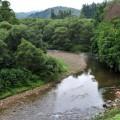 清流白川のせせらぎが心地よく響く