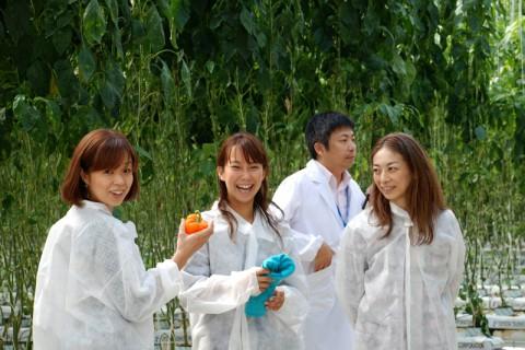 野菜工場見学を楽しんだ仙台在住の奥さまたち