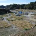宮戸島「月浜」は壊滅状態に