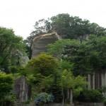 大谷石の岩肌を木々が覆う