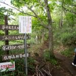 奥那須自然休養林へ入る