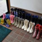 収穫体験は長靴で