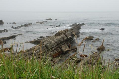 白亜紀の地層が露出する平磯海岸