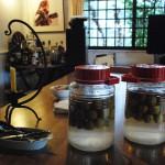 裏庭で収穫した実で梅酒が仕込まれる