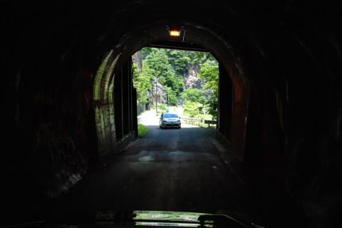 トンネルの先には原生林が広がる