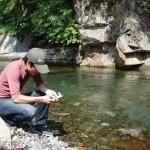 中津川のペーハーを測定してみた