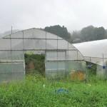 敷地内には農業体験ができる畑もある