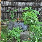 産湯に使ったとされる井戸