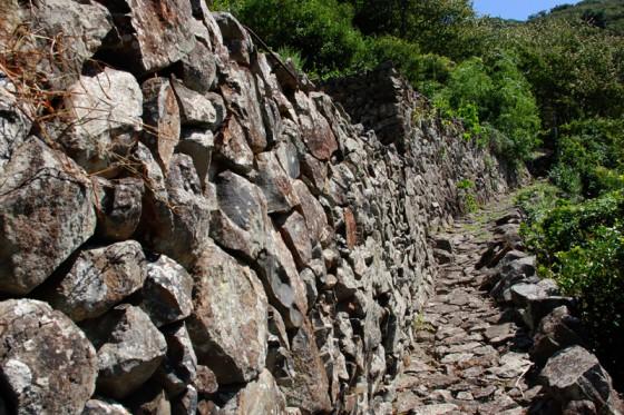 南米ペルーの「インカ道」を思わせる