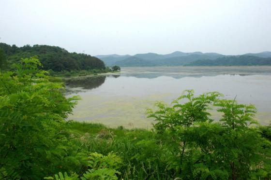 湿地面積231ha、生態系保護区は854haと広大なエリアが保全地域に指定されている。