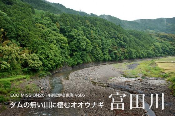 富田川流域には人の暮らしと密接に繋がる共生林が続く