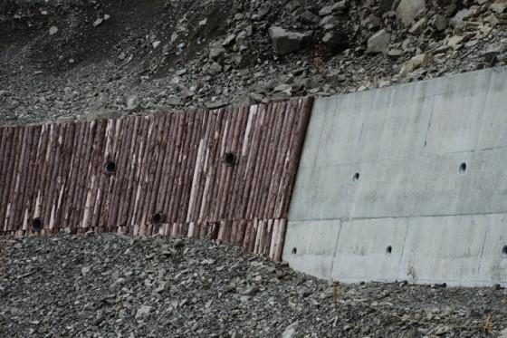 従来のコンクリートと間伐材の工法が並んで見える現場。