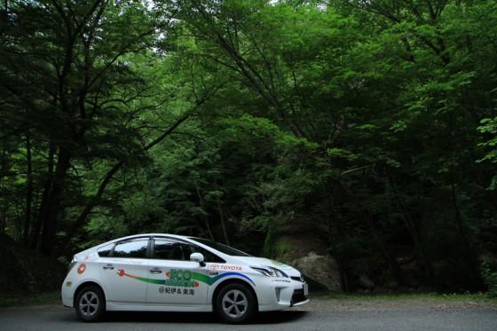 道路脇には深い原生林が広がっている。