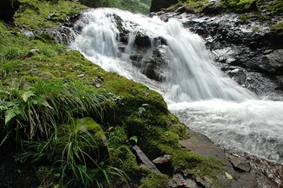 この流れが津房川から駅館川を経て周防灘へと注ぐ。