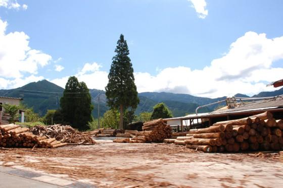 林業の盛んな水上村には多くの製材所が操業している。