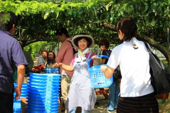 平日にも関わらず梨狩りのお客さんで大賑わい。