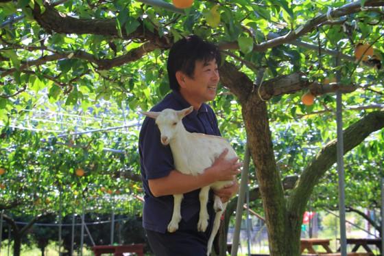 代表の樋口さんに果樹園を案内していただいた。