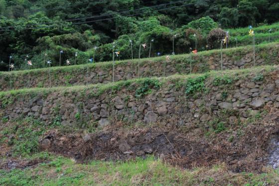 近くで見ると自然石の石垣がかなりの高さで積まれているのが分かる。