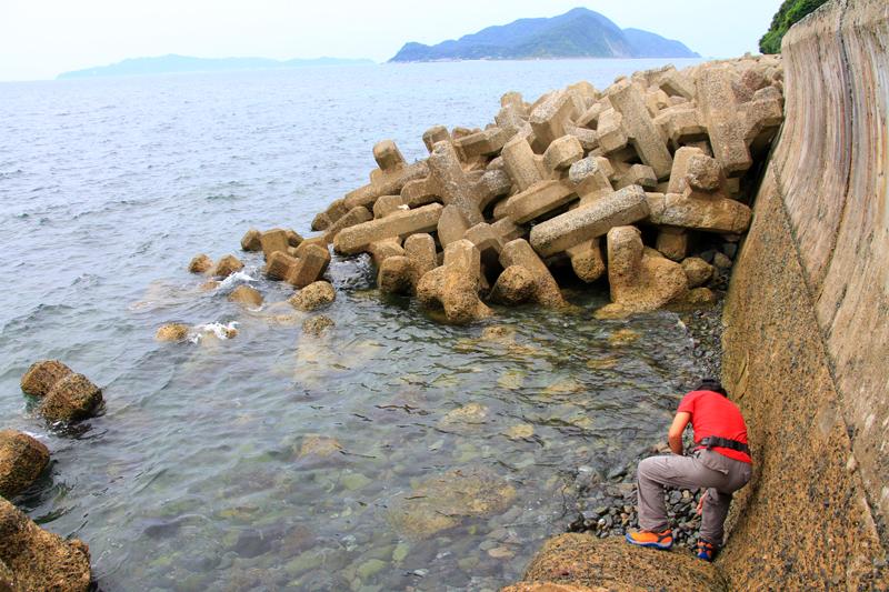 防潮堤の外側には消波ブロックが積まれている。沖には「地島」「大島」が浮かぶ。