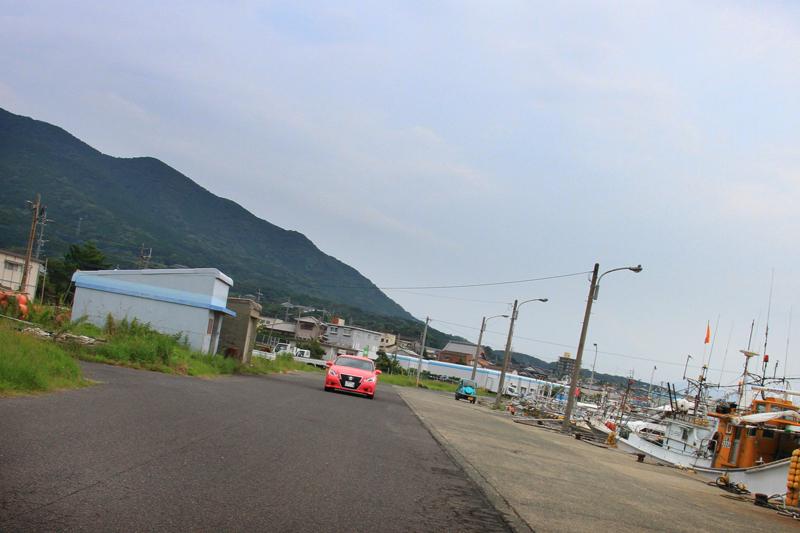 """鐘崎漁港に""""ピンククラウン""""現る!"""