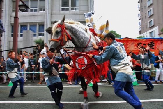 67頭の飾り馬が15,000人を超える勢子がそれぞれの馬に続く。