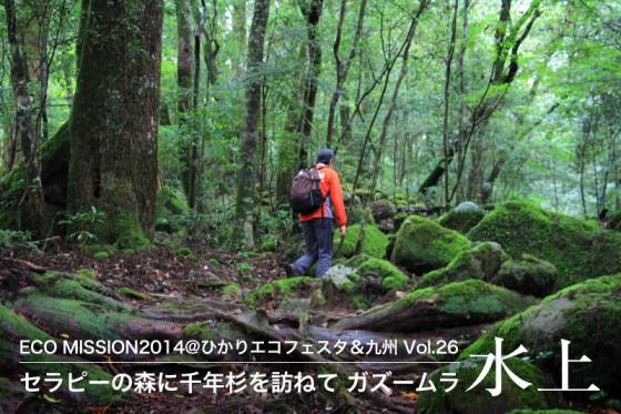 遥かな時を超えて極相林となった原始の森に抱かれる。
