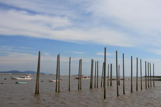 干満差が大きいため、係留する支柱が水面から3メートル程とびだしている。